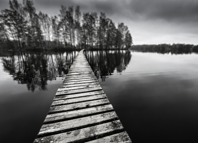 wooden path on a lake